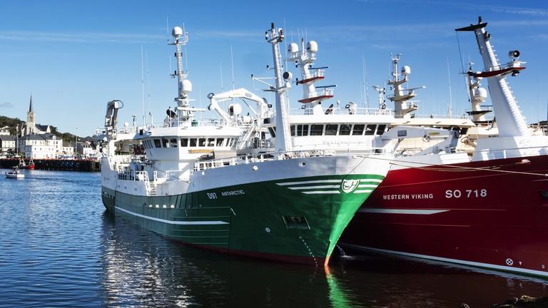 Pelagic Trawlers